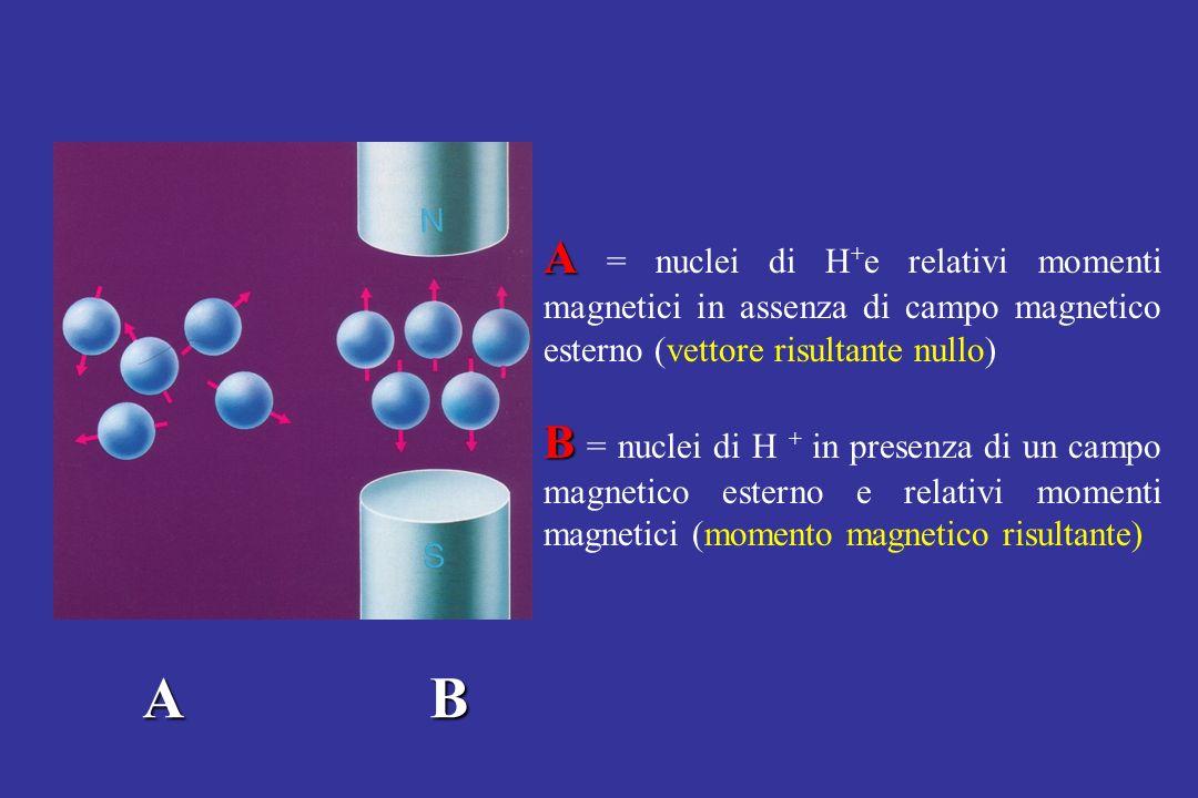 A = nuclei di H+e relativi momenti magnetici in assenza di campo magnetico esterno (vettore risultante nullo)