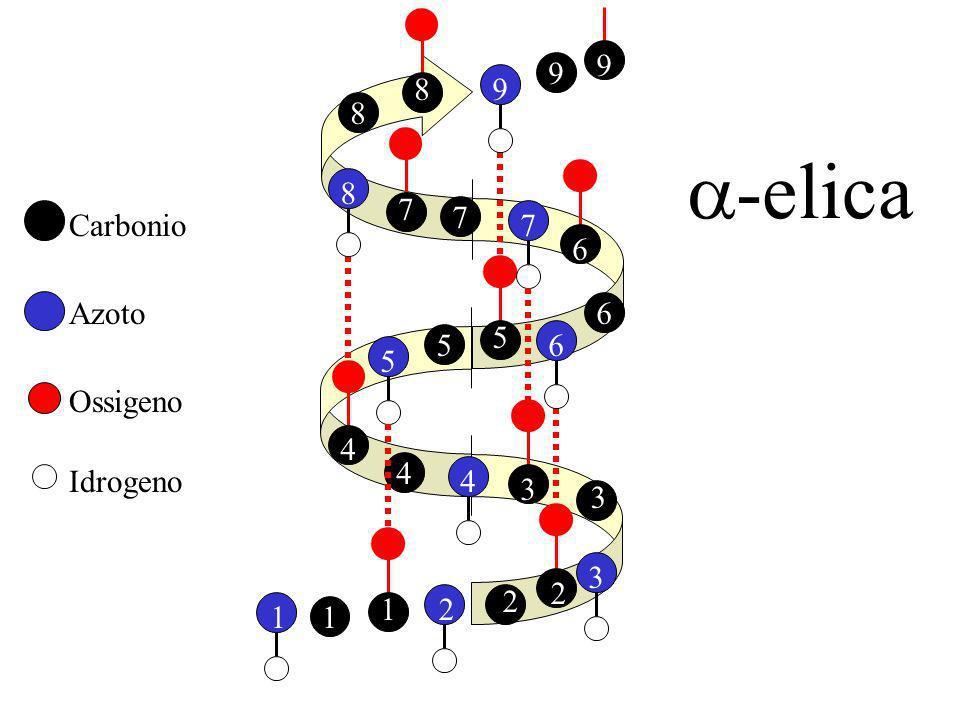 8 9 9 7 a-elica 6 Carbonio 5 Azoto 4 Ossigeno 3 Idrogeno 2 1