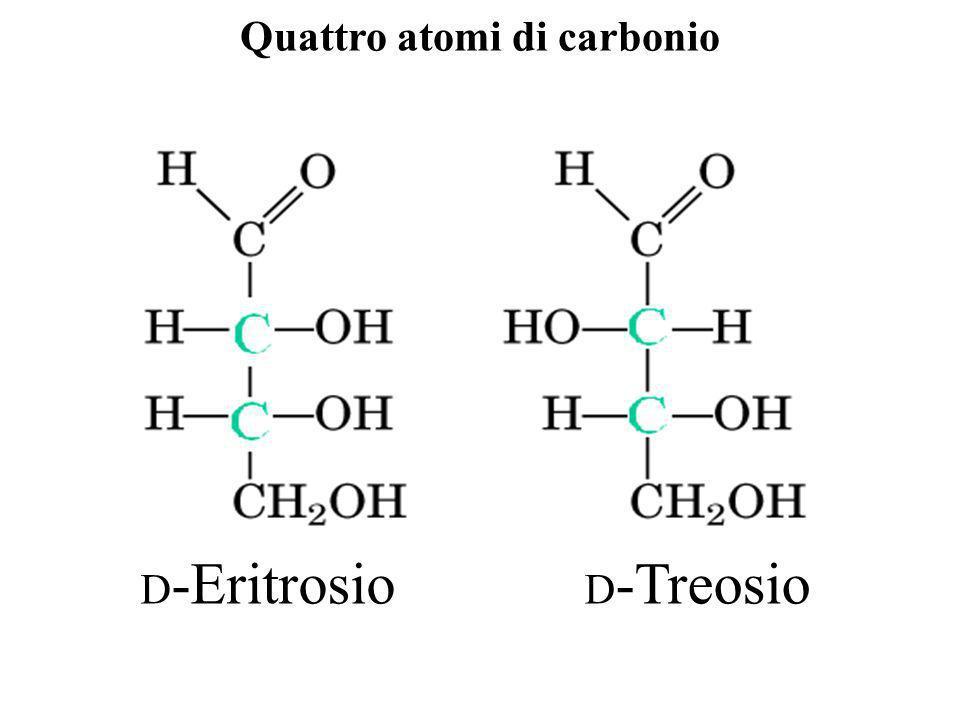 Quattro atomi di carbonio