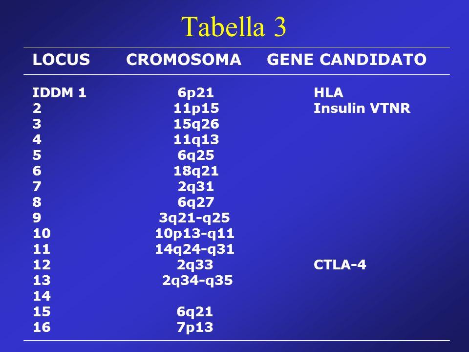 Tabella 3 LOCUS CROMOSOMA GENE CANDIDATO IDDM 1 6p21 HLA