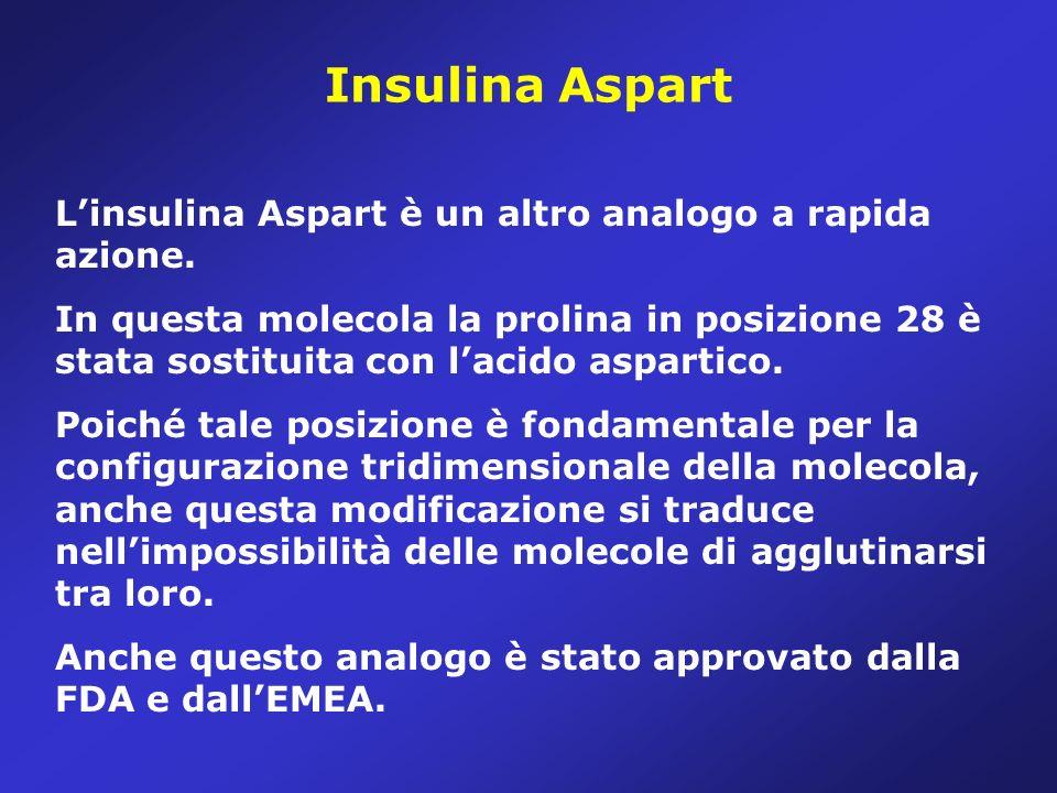 Insulina Aspart L'insulina Aspart è un altro analogo a rapida azione.