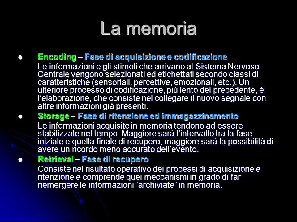 La memoria Encoding – Fase di acquisizione e codificazione