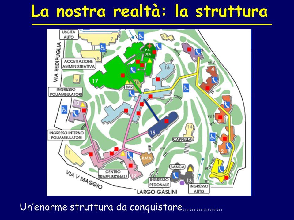 La nostra realtà: la struttura