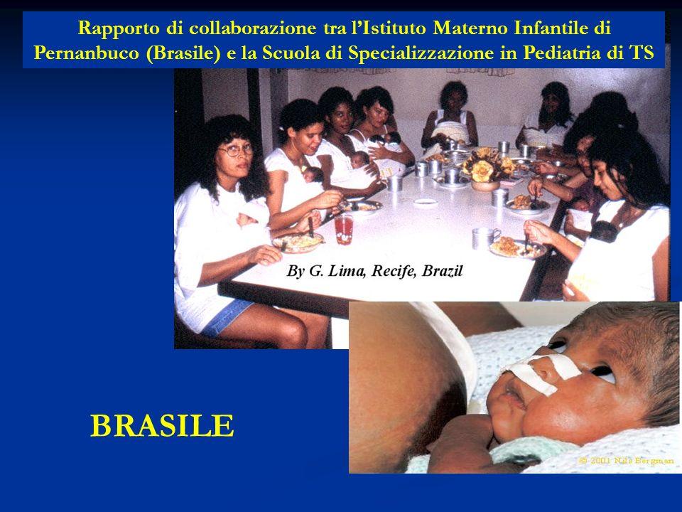 Rapporto di collaborazione tra l'Istituto Materno Infantile di Pernanbuco (Brasile) e la Scuola di Specializzazione in Pediatria di TS