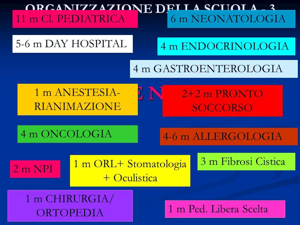 ORGANIZZAZIONE DELLA SCUOLA - 3