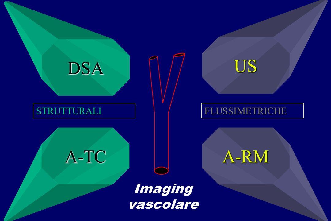 US DSA STRUTTURALI FLUSSIMETRICHE A-TC A-RM Imaging vascolare
