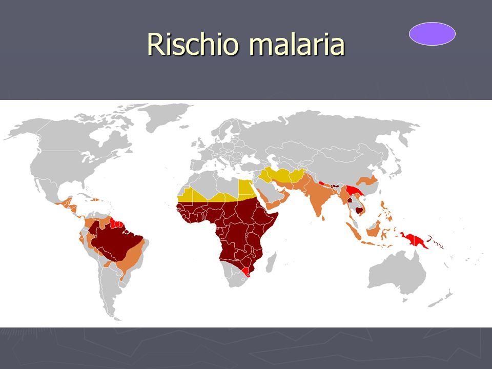 Rischio malaria