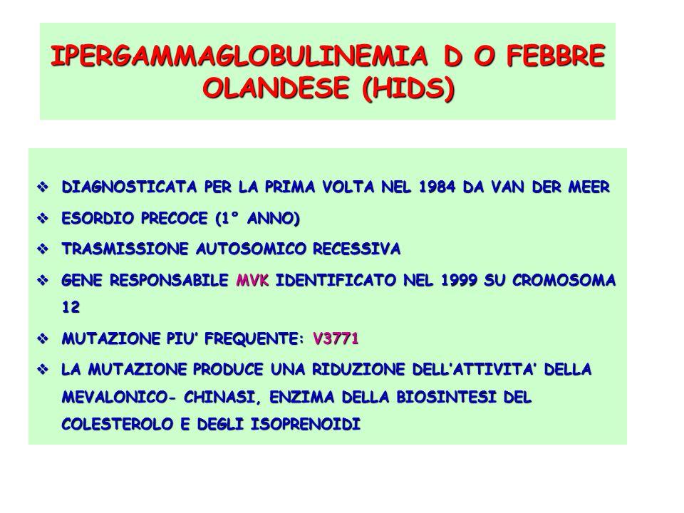 IPERGAMMAGLOBULINEMIA D O FEBBRE OLANDESE (HIDS)