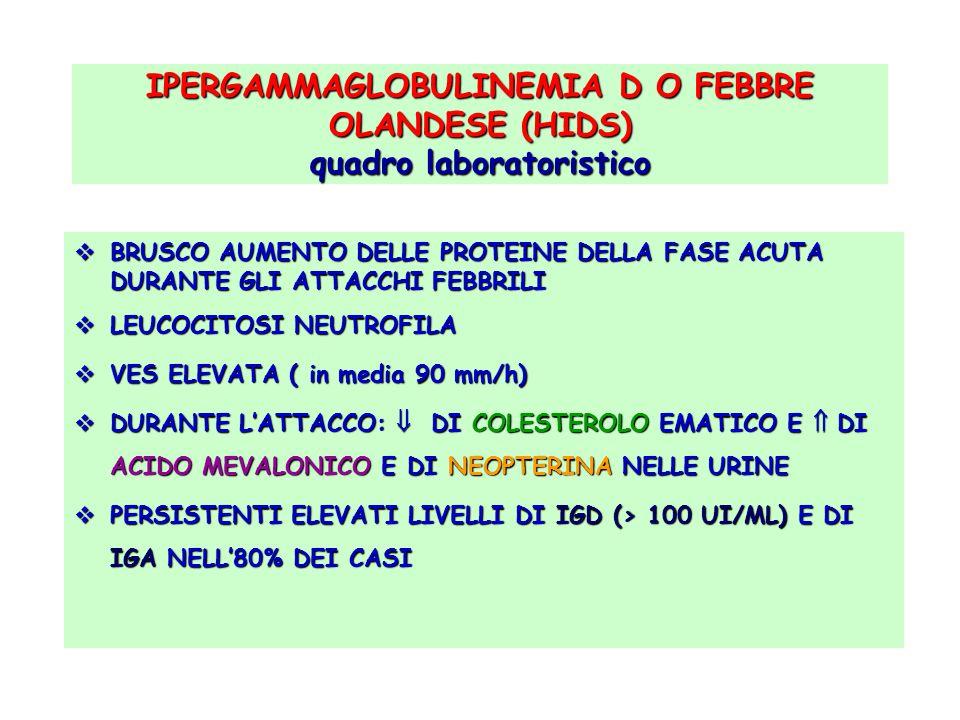 IPERGAMMAGLOBULINEMIA D O FEBBRE OLANDESE (HIDS) quadro laboratoristico