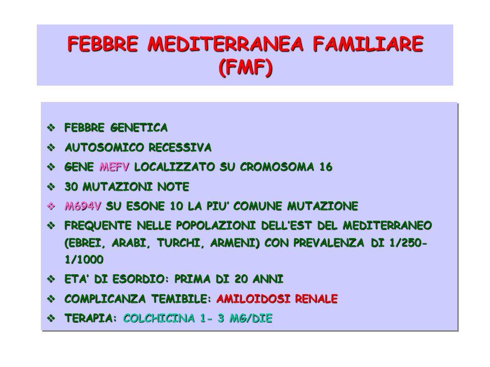 FEBBRE MEDITERRANEA FAMILIARE (FMF)
