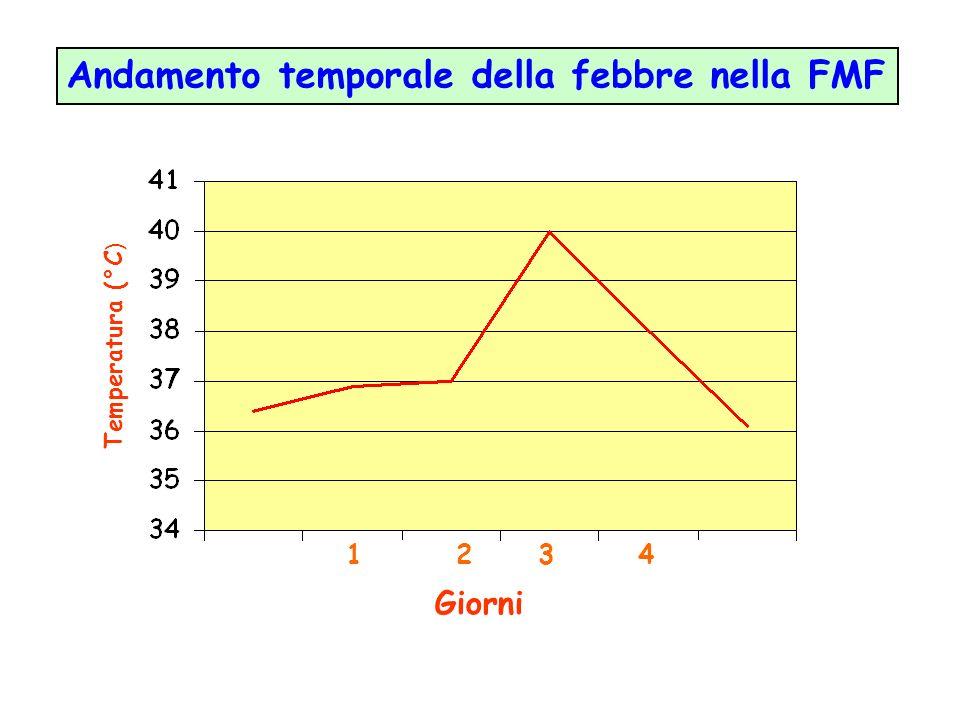 Andamento temporale della febbre nella FMF
