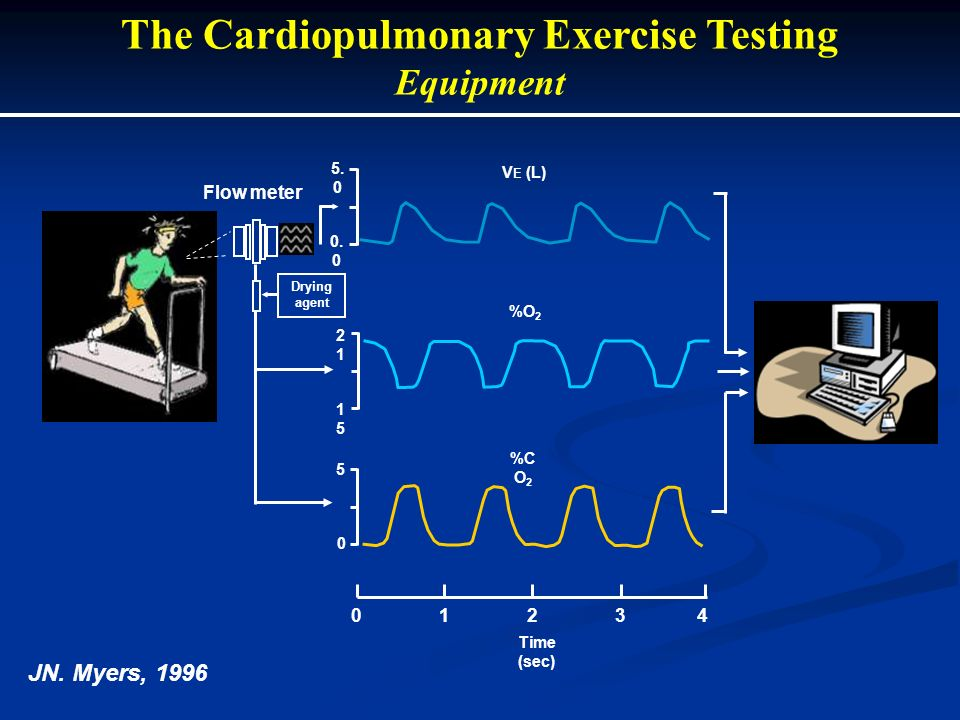 The Cardiopulmonary Exercise Testing