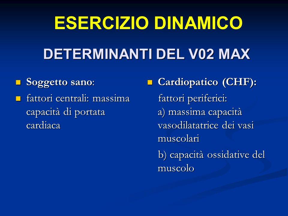 ESERCIZIO DINAMICO DETERMINANTI DEL V02 MAX Soggetto sano: