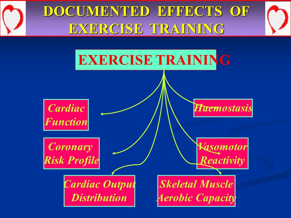 DOCUMENTED EFFECTS OF EXERCISE TRAINING