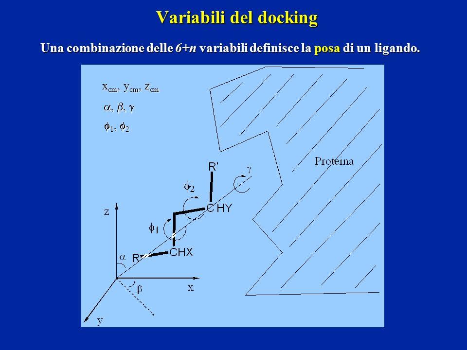 Variabili del docking Una combinazione delle 6+n variabili definisce la posa di un ligando. xcm, ycm, zcm.