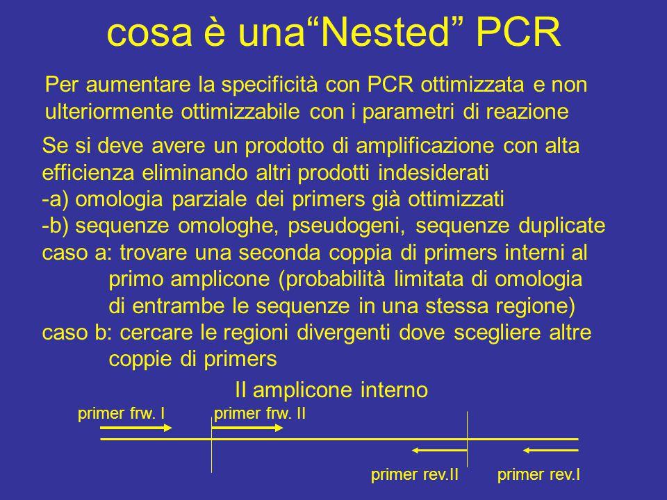 cosa è una Nested PCR Per aumentare la specificità con PCR ottimizzata e non ulteriormente ottimizzabile con i parametri di reazione.