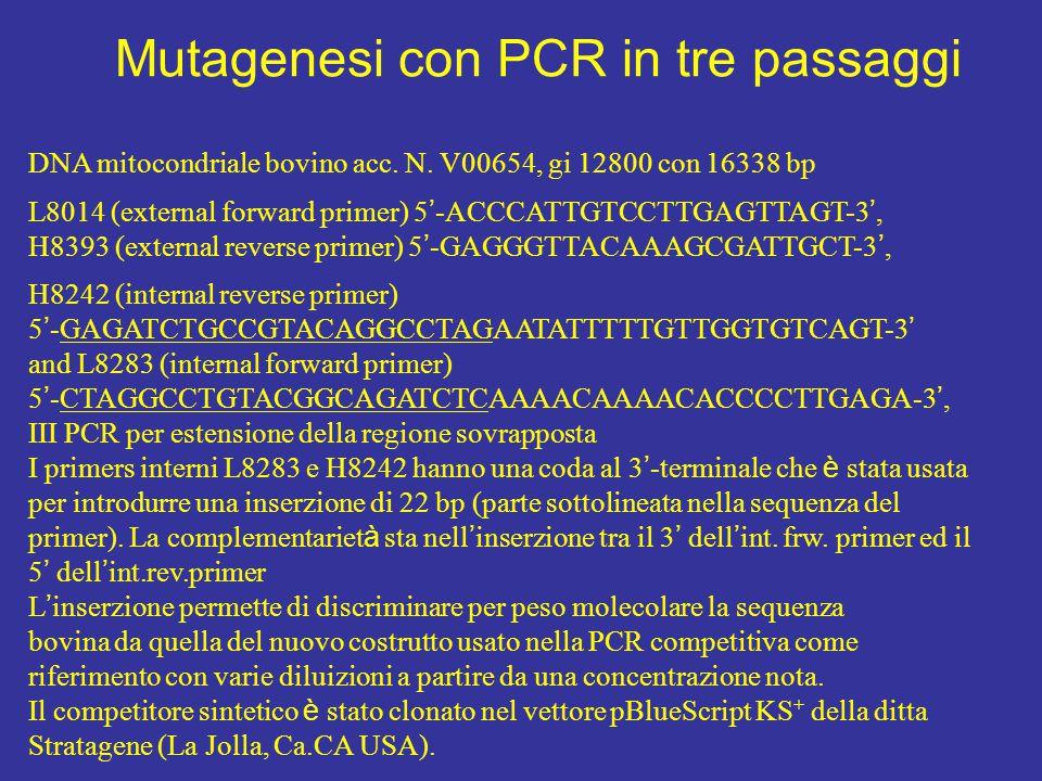 Mutagenesi con PCR in tre passaggi