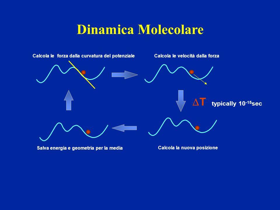 Dinamica Molecolare DT typically 10-15sec Calcola la nuova posizione