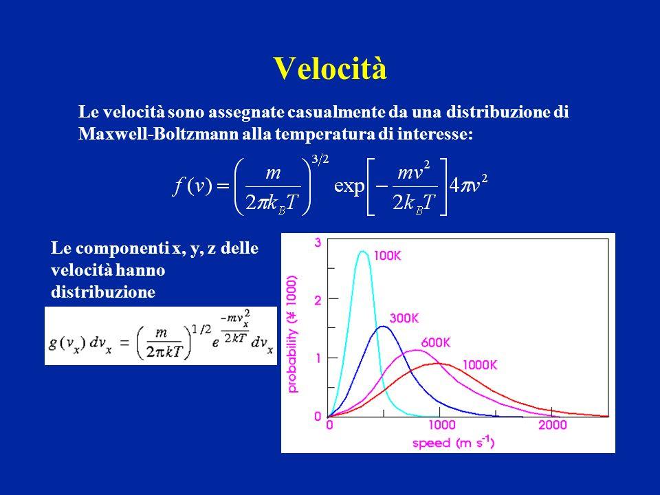 Velocità Le velocità sono assegnate casualmente da una distribuzione di. Maxwell-Boltzmann alla temperatura di interesse: