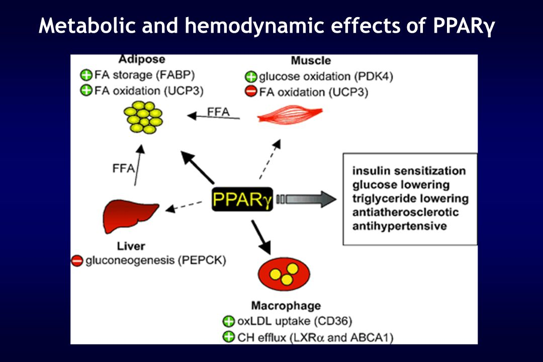 Metabolic and hemodynamic effects of PPARγ