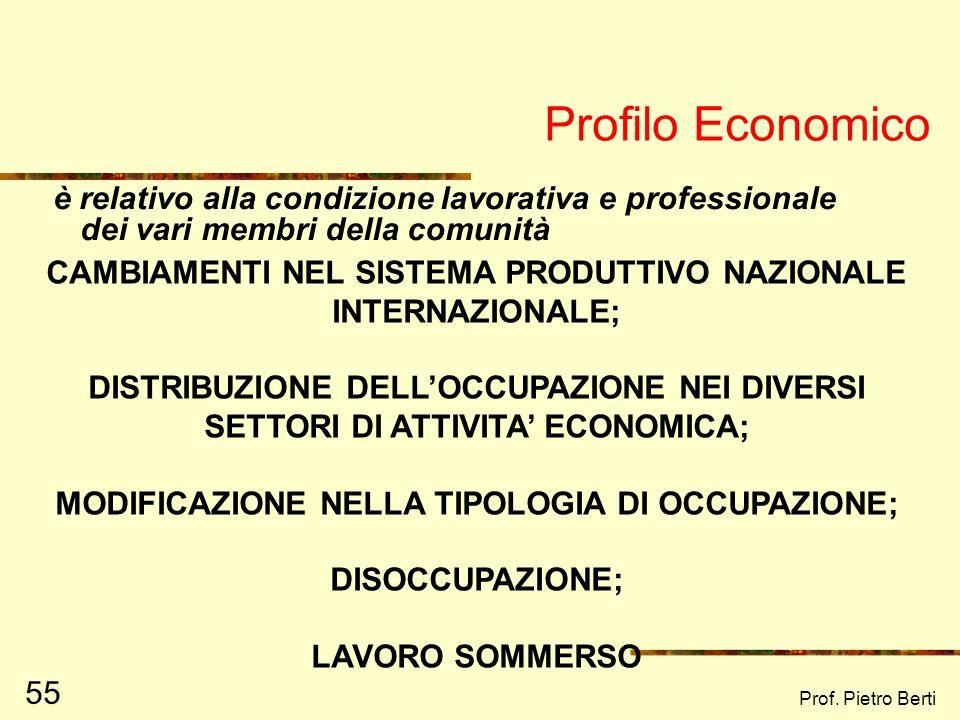 Profilo Economico è relativo alla condizione lavorativa e professionale dei vari membri della comunità.