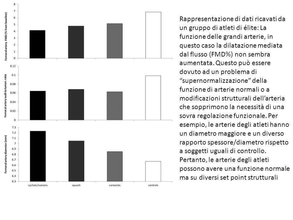Rappresentazione di dati ricavati da un gruppo di atleti di élite: La funzione delle grandi arterie, in questo caso la dilatazione mediata dal flusso (FMD%) non sembra aumentata.