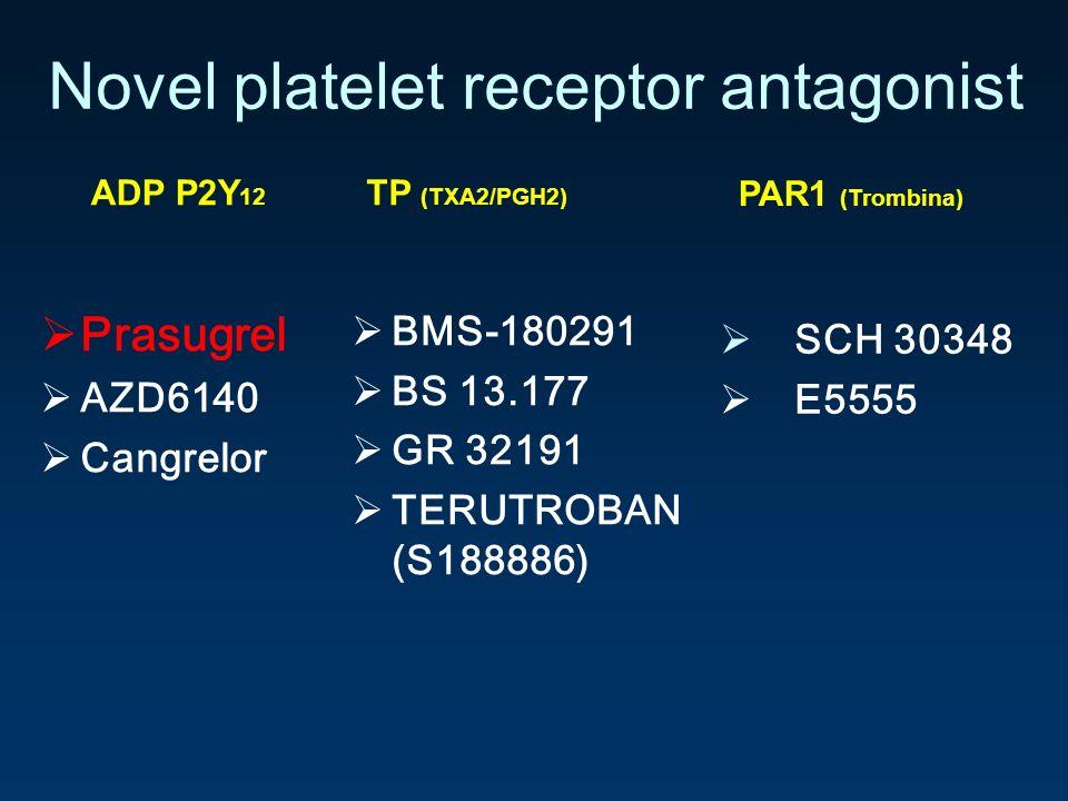 Novel platelet receptor antagonist