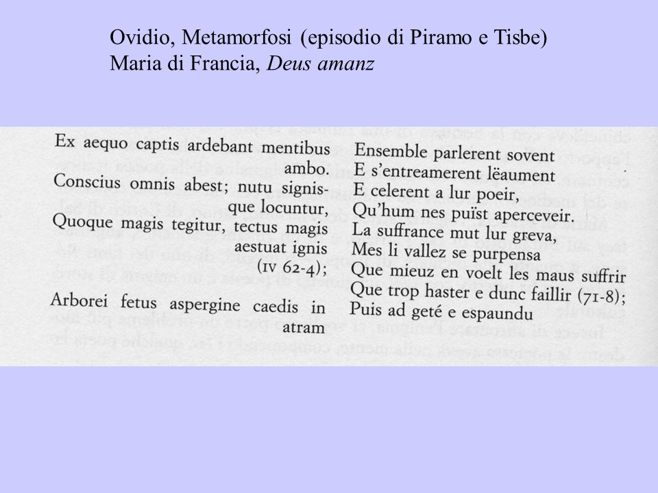 Ovidio, Metamorfosi (episodio di Piramo e Tisbe)