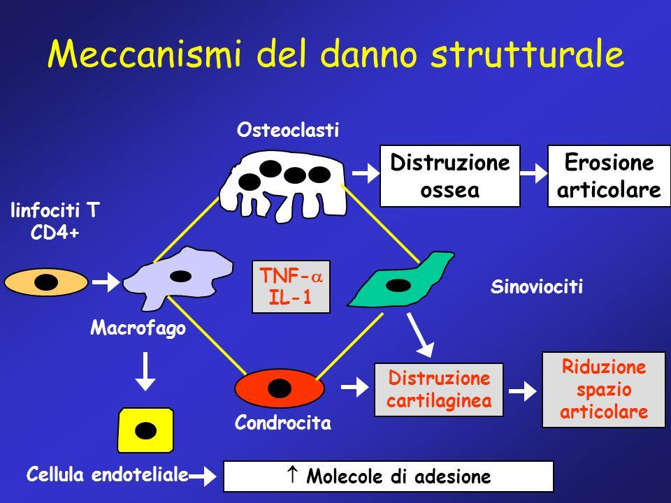 Meccanismi del danno strutturale