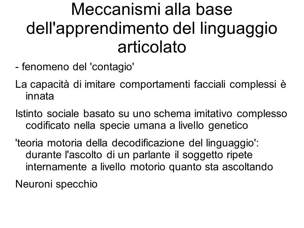 Meccanismi alla base dell apprendimento del linguaggio articolato