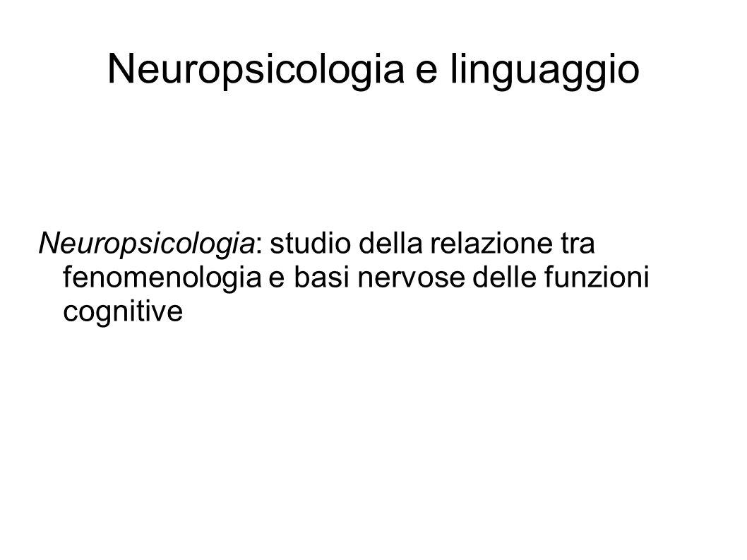 Neuropsicologia e linguaggio
