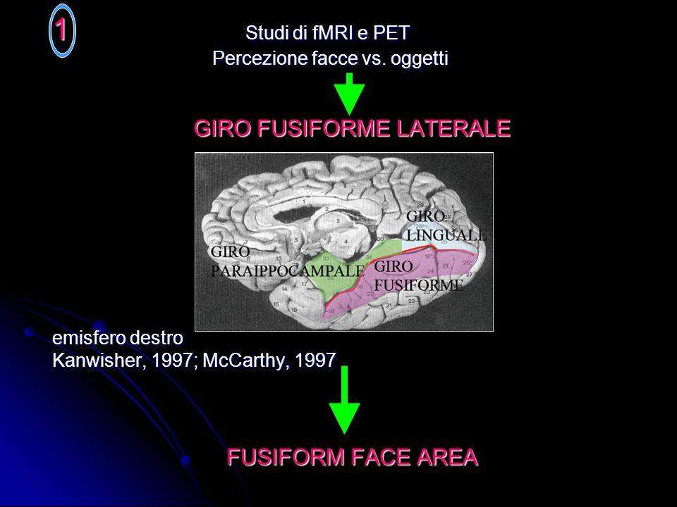 GIRO FUSIFORME LATERALE