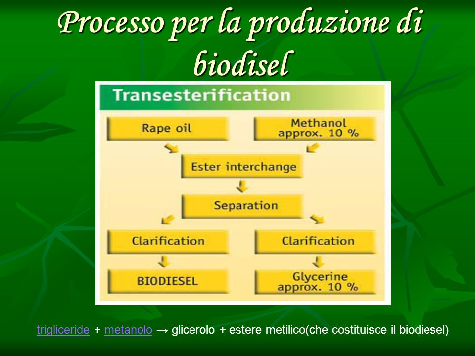 Processo per la produzione di biodisel