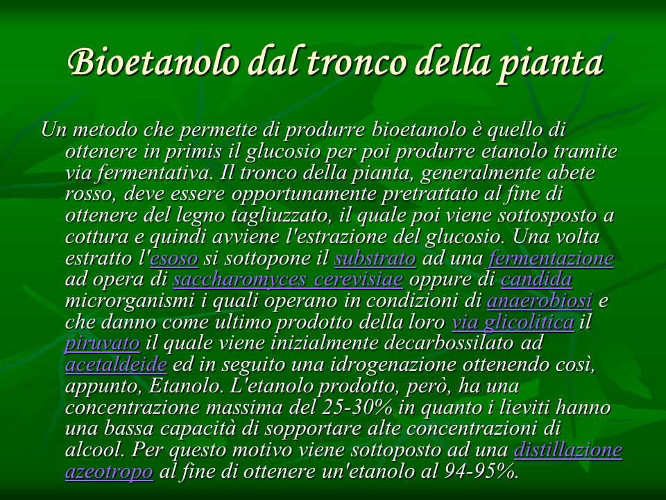 Bioetanolo dal tronco della pianta