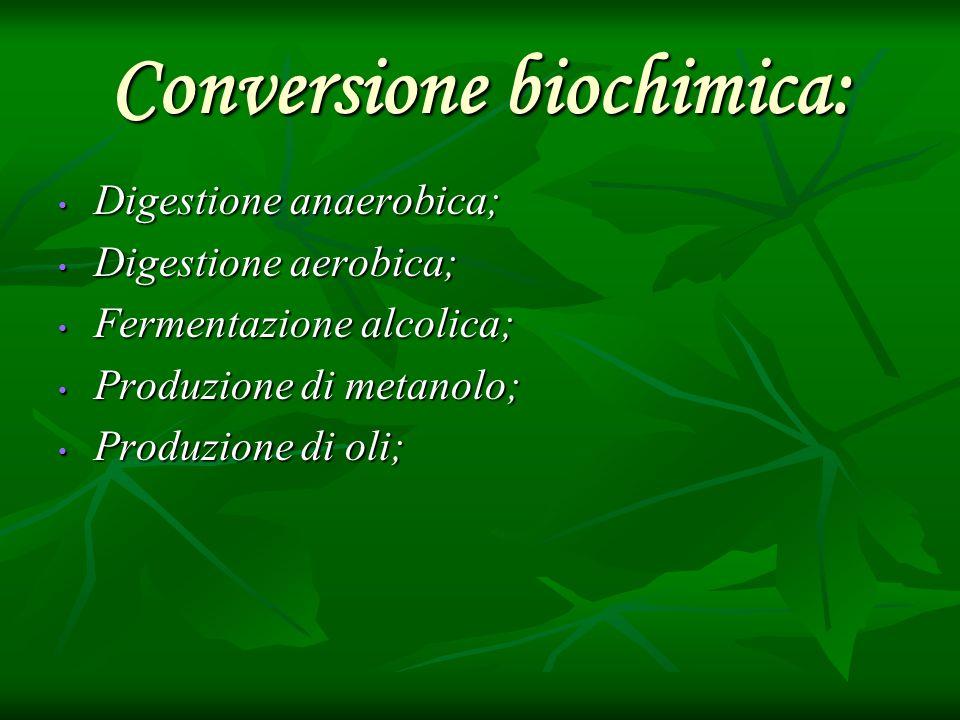 Conversione biochimica: