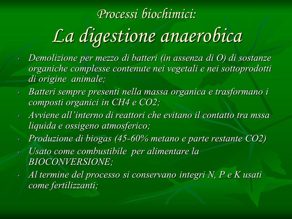 Processi biochimici: La digestione anaerobica