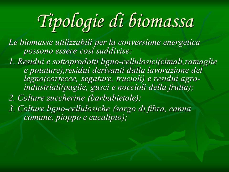 Tipologie di biomassa Le biomasse utilizzabili per la conversione energetica possono essere così suddivise: