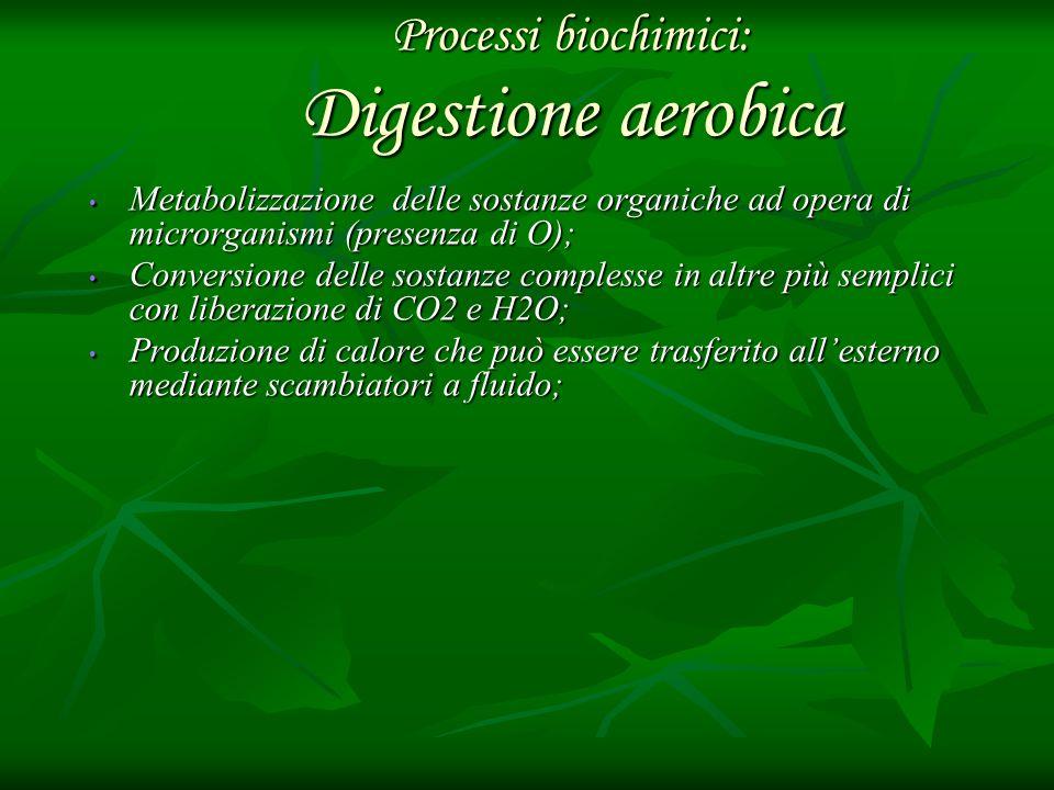 Processi biochimici: Digestione aerobica