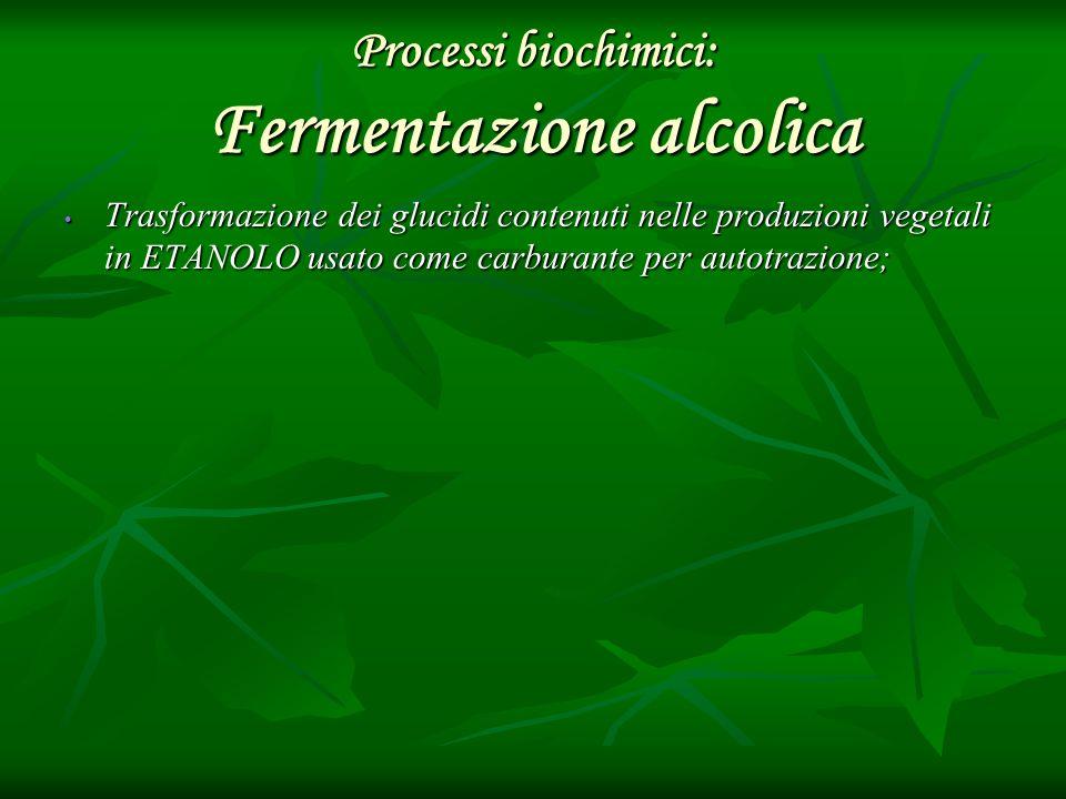 Processi biochimici: Fermentazione alcolica