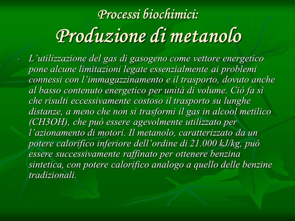 Processi biochimici: Produzione di metanolo