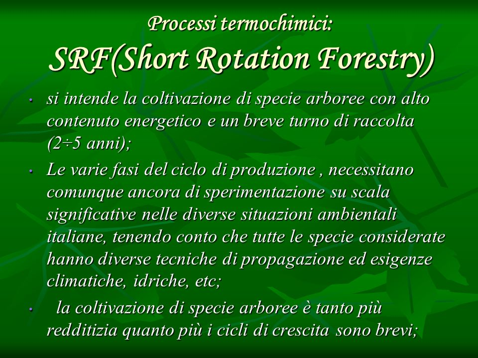Processi termochimici: SRF(Short Rotation Forestry)