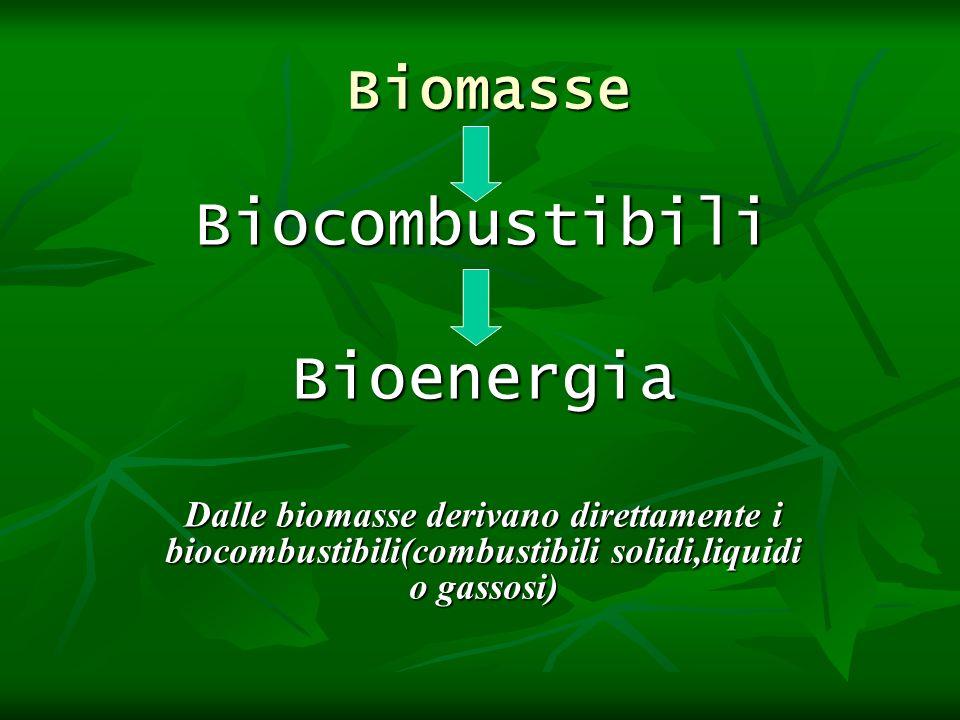 Biocombustibili Bioenergia Biomasse