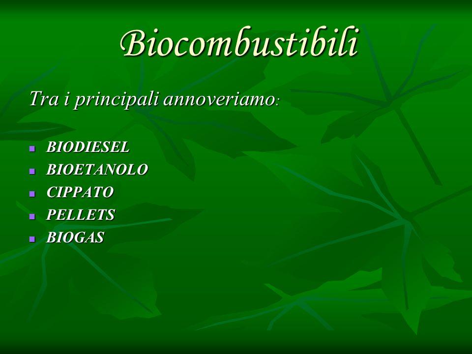 Biocombustibili Tra i principali annoveriamo: BIODIESEL BIOETANOLO