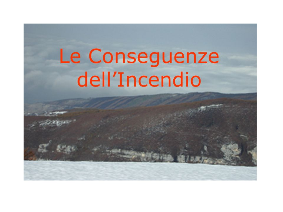 Le Conseguenze dell'Incendio