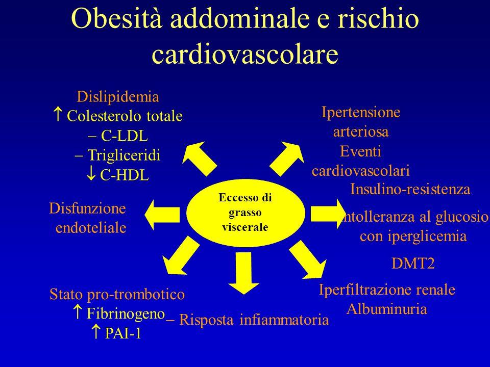 Obesità addominale e rischio cardiovascolare