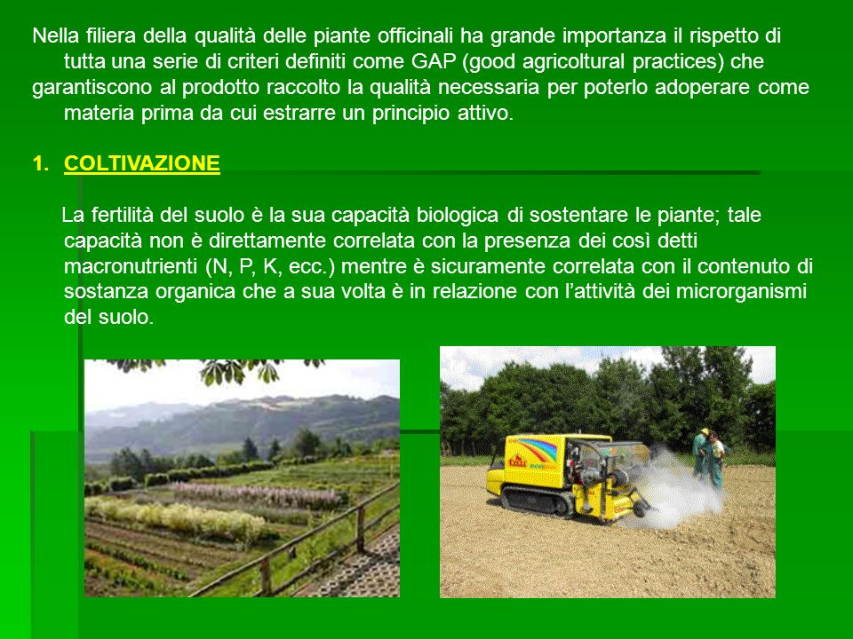 Nella filiera della qualità delle piante officinali ha grande importanza il rispetto di tutta una serie di criteri definiti come GAP (good agricoltural practices) che