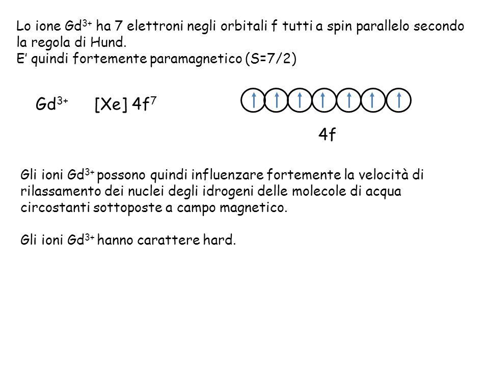 Lo ione Gd3+ ha 7 elettroni negli orbitali f tutti a spin parallelo secondo la regola di Hund.