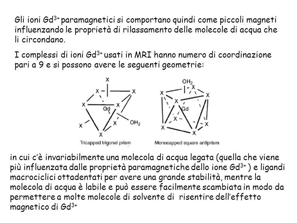 Gli ioni Gd3+ paramagnetici si comportano quindi come piccoli magneti influenzando le proprietà di rilassamento delle molecole di acqua che li circondano.