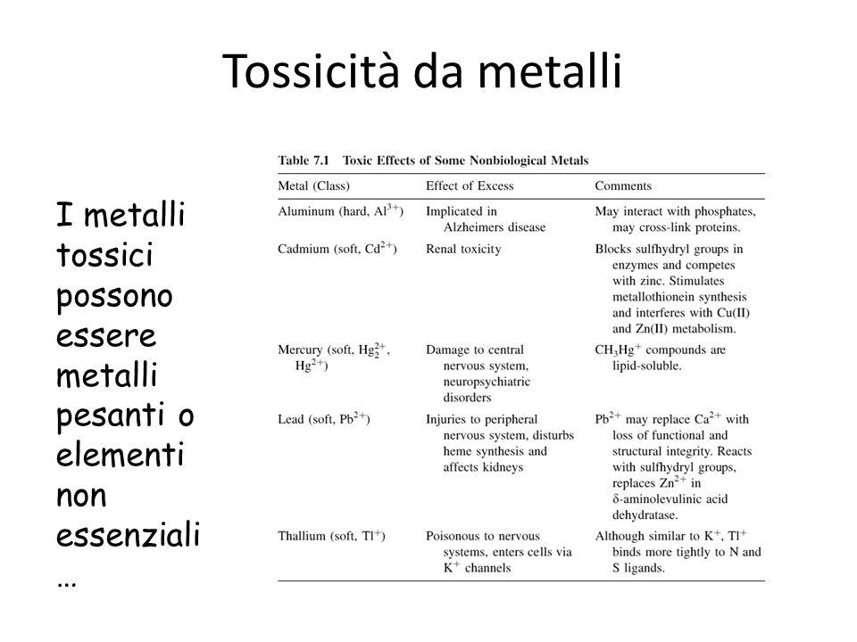 Tossicità da metalli I metalli tossici possono essere metalli pesanti o elementi non essenziali…