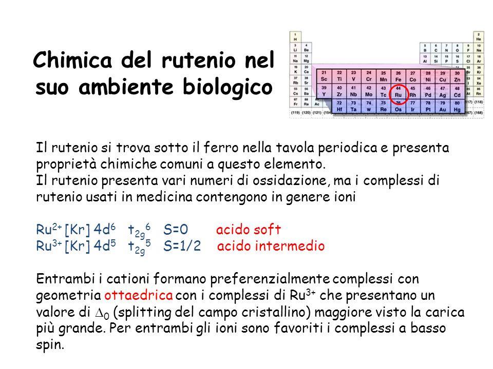 Chimica del rutenio nel suo ambiente biologico